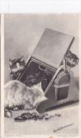 CATS IN COAL BOX -MAUDE SCRIVENOR - Katten