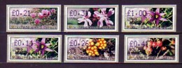 2002 chypre neuf ** distributeur n� 4/8 fleur