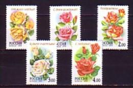 1999 russie neuf ** n� 6413/17 fleur : la rose