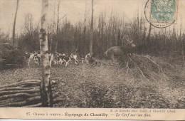 Chasse à Courre   Equipage De CHANTILLY  - Le Cerf Sur Ses Fins - Hunting