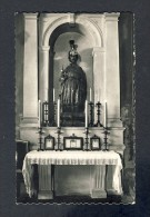 Image Pieuse (en Fait Carte Postale): Saint Sebastien, A Tafalla (105755) - Devotieprenten