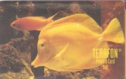 TARJETA DE PUERTO RICO DE UN PEZ-FISH (NUEVA-MINT) TERAFON - Fish