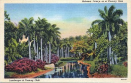 HABANA (Cuba) 1930? - Landscape At Country Club - Kuba