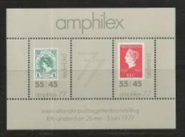 NEDERLAND, 1977, Mint  Never Hinged Stamp(s) Block Nr.16, Amphilex, NVPH Nr. 1141,  #6847 - Blocks & Sheetlets