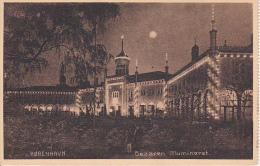 """PC Köbenhavn - Bazaren Illumineret - Stamp """"Tivoli Postkort Kiosk"""" - 1913 (8406) - Dänemark"""