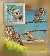 gu14215b Guinea 2014 Birds Owl s/s