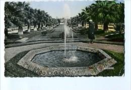 MAR329 - CASABLANCA - Parc Lyautey - Casablanca
