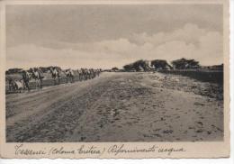 TESSENEI - Colonia Eritrea RIFORNIMENTO ACQUA - Erythrée