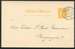 1891 Norway Kristiania 3 Ore Stationery Brev-kort - Copenhagen - Interi Postali
