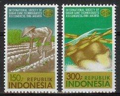 Mgm1270 INTERNATIONALE SOCIËTEIT VAN RIETSUIKER TECHNOLOGEN ISSCT CANE SUGAR ZUCKERROHR INDONESIA 1986 PF/MNH - Landbouw