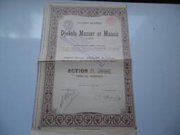 MINIERE DES DJEBELS MASSER ET MAAZIZ (algerie) 1903 - Shareholdings