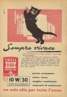 # ROYAL DUTCH SHELL OIL 1950s Car Italy Advert Pub Pubblicità Reklame Huile Olio Aceite Ol Cat - Vervoer