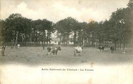 N°38769 -cpa Asile National Du Vésinet -la Ferme- - Fermes