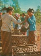 PIG MARKET  BALI INDONESIA - Indonesia