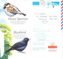 GREAT BRITAIN POSTAGE PAID ILLUSTRATED AEROGRAM ON BIRD COMMERCIALLY SENT TO INDIA ON 1994 - 1952-.... (Elizabeth II)