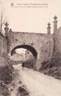 Vieux Château D'ECAUSSINES-LALAING - Pont Reliant Le Jardin Au Château (vases Du XVIII é Siècle) - Ecaussinnes