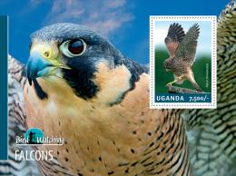 ugn14303b Uganda 2014 Bird Watching s/s Falcons