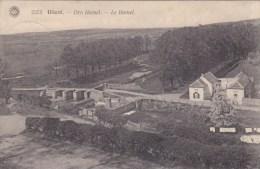 Diest - Den Hamel - Diest