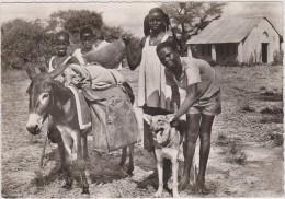 CAMEROUN,CAMEROON,ancienn E Colonie Allemande Gérée Par Les Français,prés Nigeria,tchad,FAMILLE CROYANTE CONVERTIE,chien - Cameroun