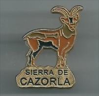 Pin Cabra Montes . Sheet Mountain SIERRA DE CAZORLA - Animales