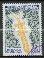 TAAF  Insecte 1973  N°50 - Terres Australes Et Antarctiques Françaises (TAAF)