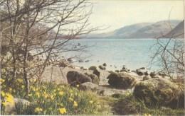 Spring At Ullswater, Lakes District, England -  Sanderson & Dixon KLD 628 Unused - Cumberland/ Westmorland