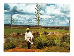 Madagascar Paysage Des Hauts Plateaux - Madagascar