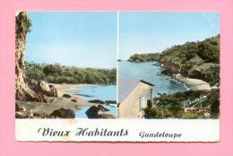 CPSM  FRANCE  971  -  GUADELOUPE  -  93 Ter  Vieux Habitants  ( Années 50/60 ) - Autres