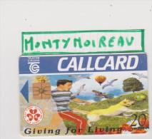 Télécarte  :  Irlande :  Callcard :   Giving  For  Living - Irlande