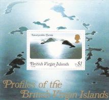 British Virgin Islands 1980 Profile Of The Islands Souvenir Sheet MNH - British Virgin Islands