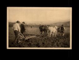 AGRICULTURE - Attelage Cheval - Cheval Au Travail - Labour En Bretagne - Attelages