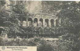 Montignies-St-Christophe - Le Pont Romain- Jolie Griffe De La Buissière- 1928 ( Voir Verso ) - Erquelinnes