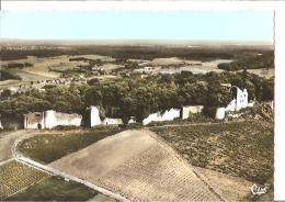 St Germain Les Arlay, Jura, Ruines  Du Château D'Arlay, Vue Aérienne. - Autres Communes