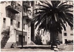Calvi: OLDTIMER VOITURE, SCOUTS - Vieilles Maisons Sur Le Quai (1951) - Corse - France - Turismo