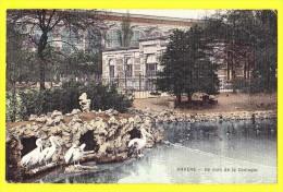 * Antwerpen - Anvers - Antwerp * Un coin de la zoologie, dierenpark, zoo, �tang, vijver, chateau, dierentuin, rare, top