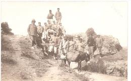 Carte Photo Militaire 1914 1918 - Soldats 113e RIT (Toulon) Maroc Territoriaux - âne - Guerre 1914-18