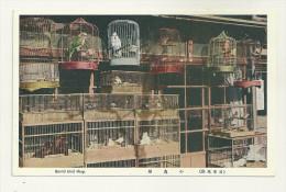 ASIE COREE DU SUD OU COREE DU NORD KOREA TYPE ETHNIE  MARCHAND OISEAUX BIRD SHOP - Korea, South