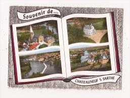 ( 49 ) CHATEAUNEUF SUR SARTHE - Chateauneuf Sur Sarthe