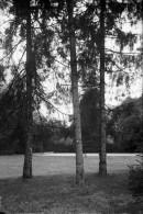 PN - 066 - LEZAY - DEUX SEVRES - Le Parc - - Plaques De Verre