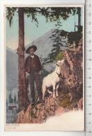 Dans La Forêt - Chèvre / Ziege / Goat / Capra - Animaux & Faune