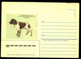 Hunting Dog Small Münsterländer Kleiner Münsterländer Pienimünsterinseisoja On Russia USSR Mint Cover From 1985 - Honden