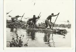 83148 VECCHIA CARTOLINA CONGO AFRICA AFRICANI IN BARCA - Congo - Brazzaville