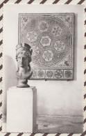 4AG1016 NIMES MUSEE DE LA MAISON CARREE MOSAIQUE EPOQUE ROMAINE IMPERATRICE PLOTINE  2  SCANS - Nîmes