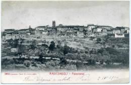 M.591.  RADICONDOLI -  Siena - Italia