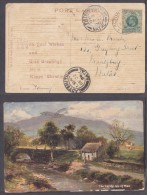 Natal December 1908, Post Card From ACTON HOMES To PIETERMARITZBURG, LADYSMITH (transit) - Zuid-Afrika (...-1961)