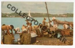 Brasil Brazil Alagoas Maceio Pesca Fishing Cartao Postal Ca1940 Postcard W4-425 - Maceió