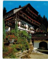 Allemagne - Hinterzarten Hotel Pension - Hinterzarten