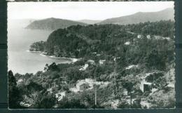 Le Rayol  ( Var )  Vue Panoramique - Bords De Mer - Dans Le Fond, Le Cap Nègre  Eag11 - France