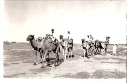 Zusters Van Liefde Van Jezus En Maria, Gent (Gand)- Carte Postale-Pakistan-Een Karavaan (caravane) - Pakistan