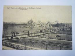 STELLINGEN-HAMBURG  :  Carl  HAGENBECK'S  STRAUSSENFARM  -  Gesamtansicht - Stellingen